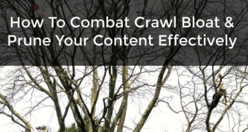 crawl bloat and pruning
